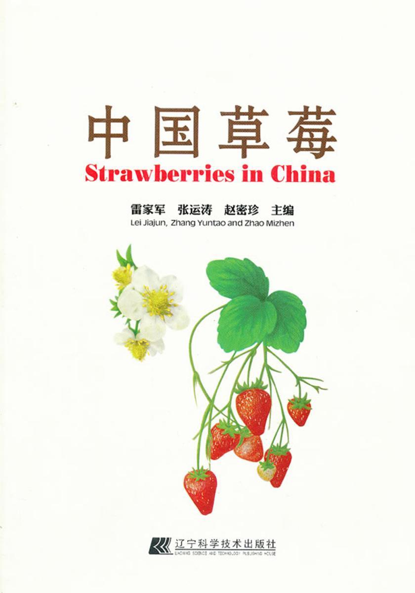 中国草莓(仅适用PC阅读)