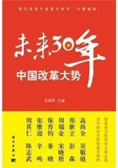 中国改革大势:未来30年(试读本)
