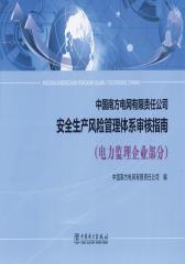 中国南方电网有限责任公司 安全生产风险管理体系审核指南(电力监理企业部分)
