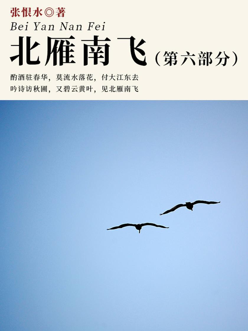 张恨水经典作品:北雁南飞·第六部分