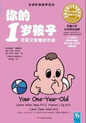 你的1岁孩子(试读本)(仅适用PC阅读)