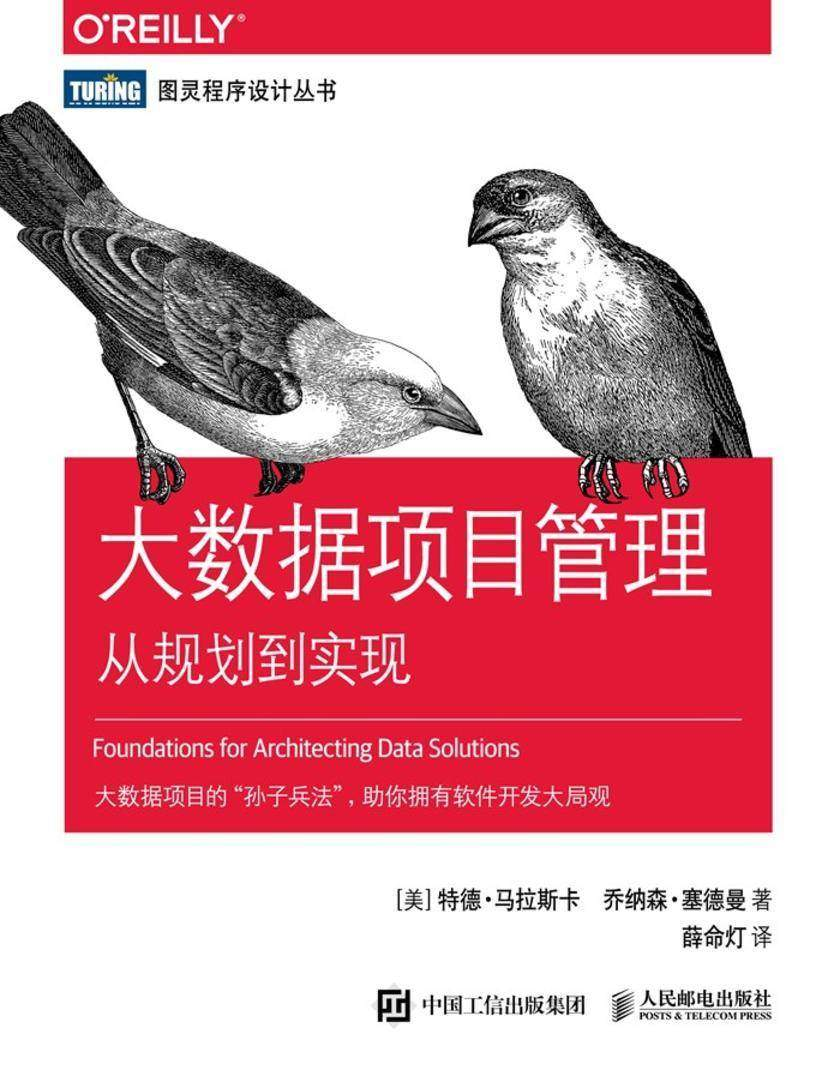 大数据项目管理:从规划到实现