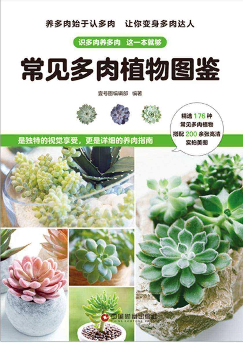 常见多肉植物图鉴