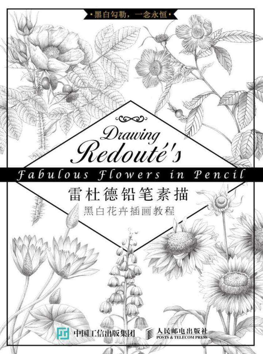 雷杜德铅笔素描 黑白花卉插画教程