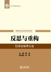 反思与重构:经济法原理五论