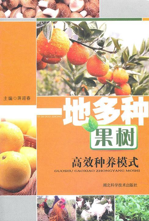 一地多种果树高效种植模式
