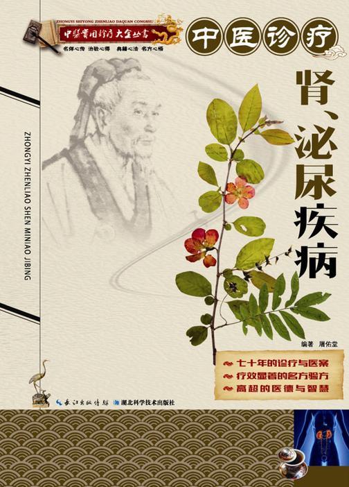 中医实用诊疗大全丛书:中医诊疗肾、泌尿疾病