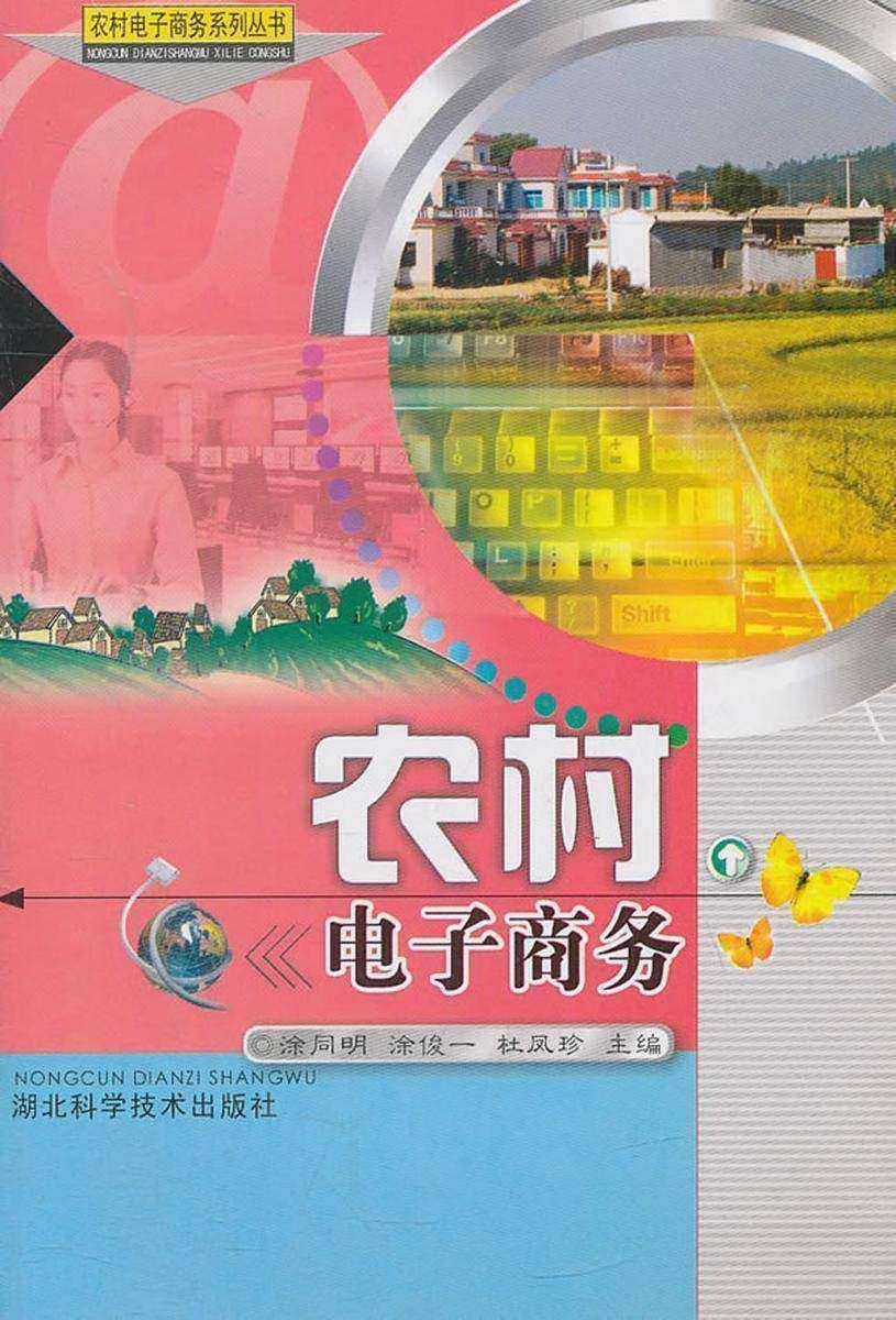 农村电子商务(农村电子商务系列丛书)