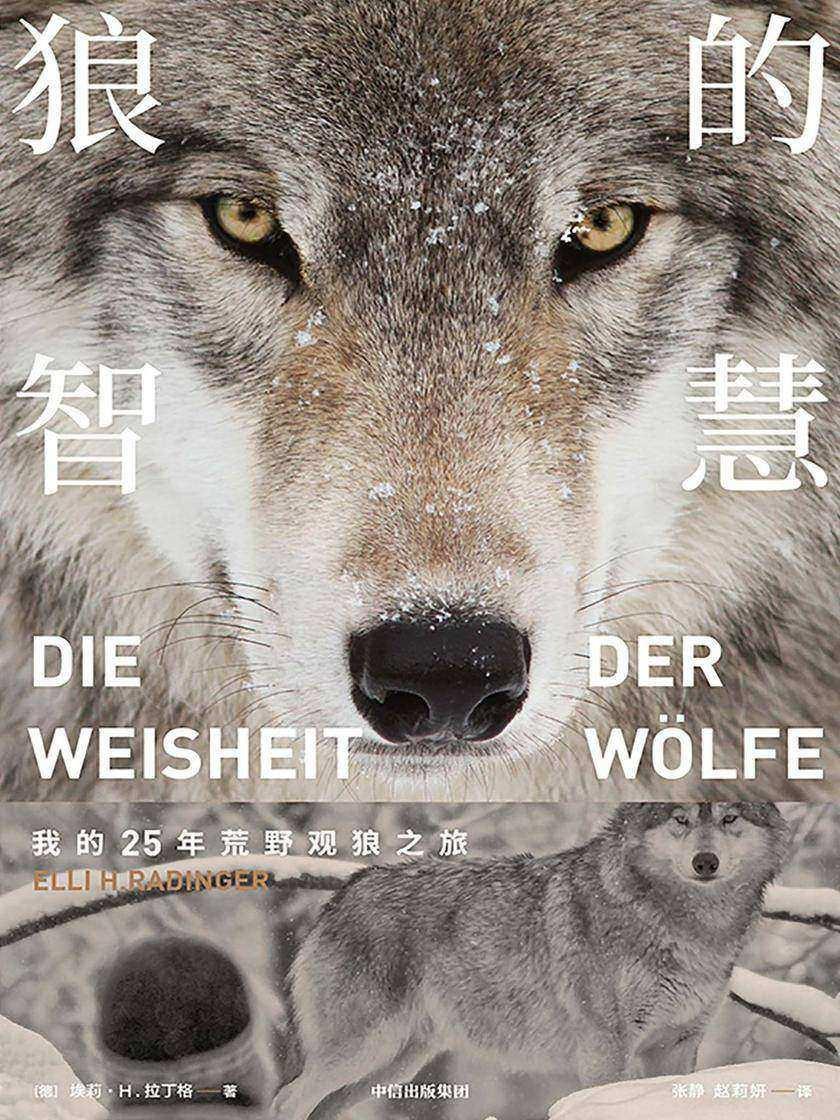 狼的智慧(樊登读书推荐!)