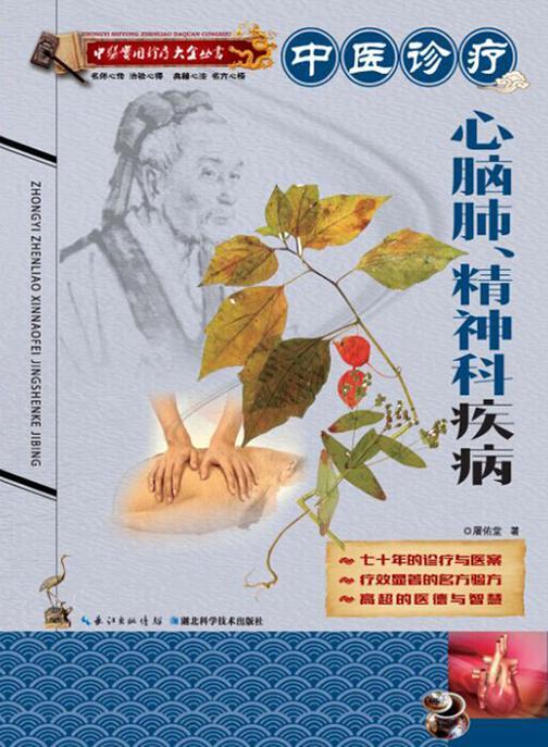 中医实用诊疗大全丛书:中医诊疗心脑肺、精神科疾病