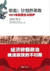 辛亥:计划外革命——1911年的民生与民声