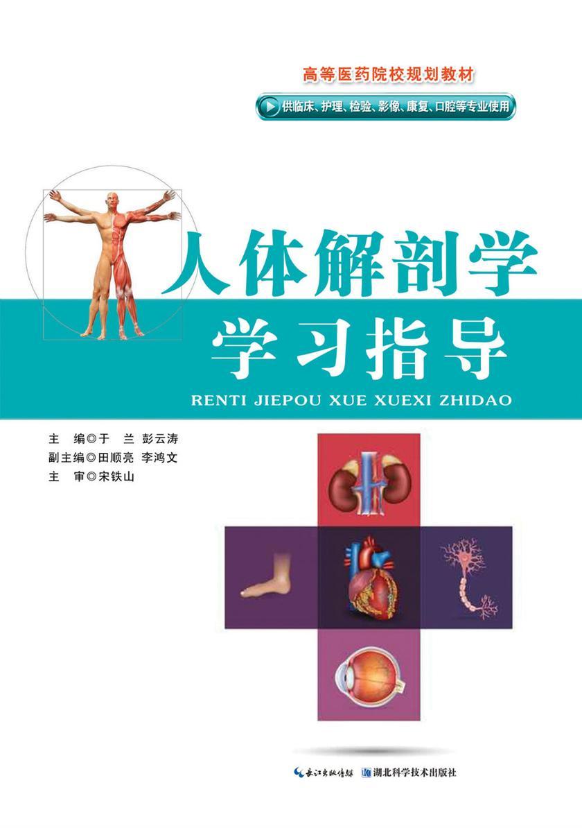 人体解剖学学习指导