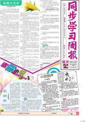 《同步学习周报》 语文 八年级(合订本) 2014004期(电子杂志)(仅适用PC阅读)
