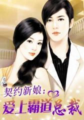 契约新娘:爱上霸道总裁2