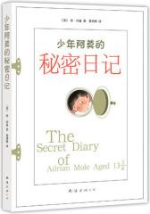 少年阿莫的秘密日记(试读本)