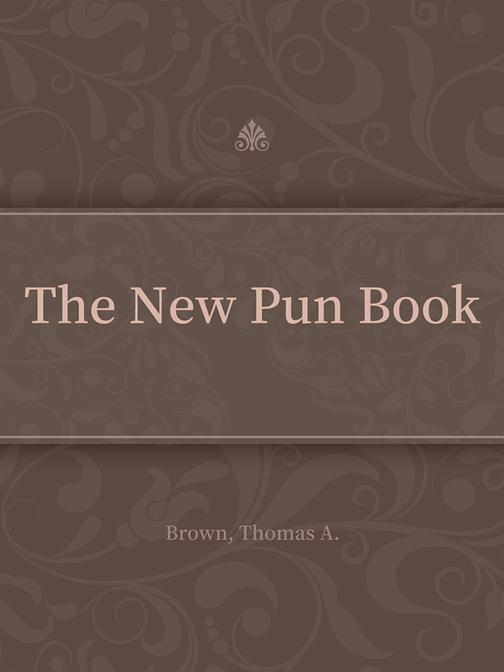 The New Pun Book