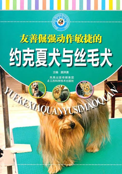 约克夏犬与丝毛犬