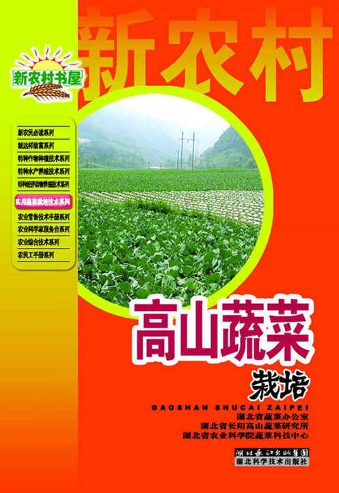 高山蔬菜栽培