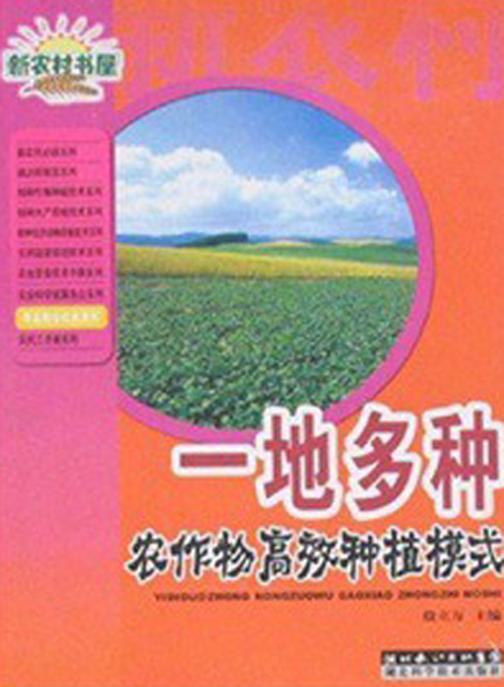 一地多种农作物高效种植模式