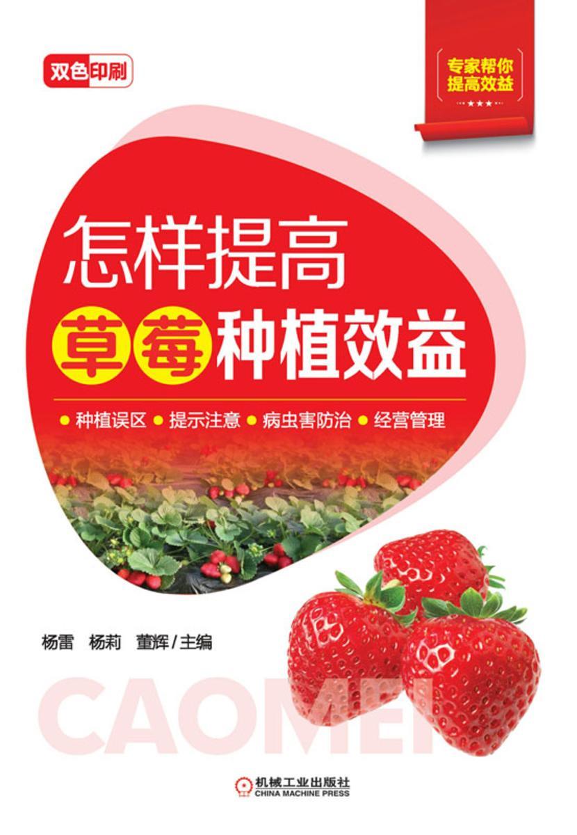 怎样提高草莓种植效益