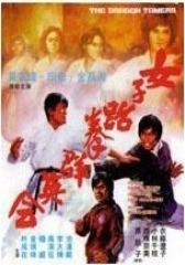 女子跆拳群英会(影视)