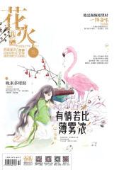 花火B-2017-11期(电子杂志)