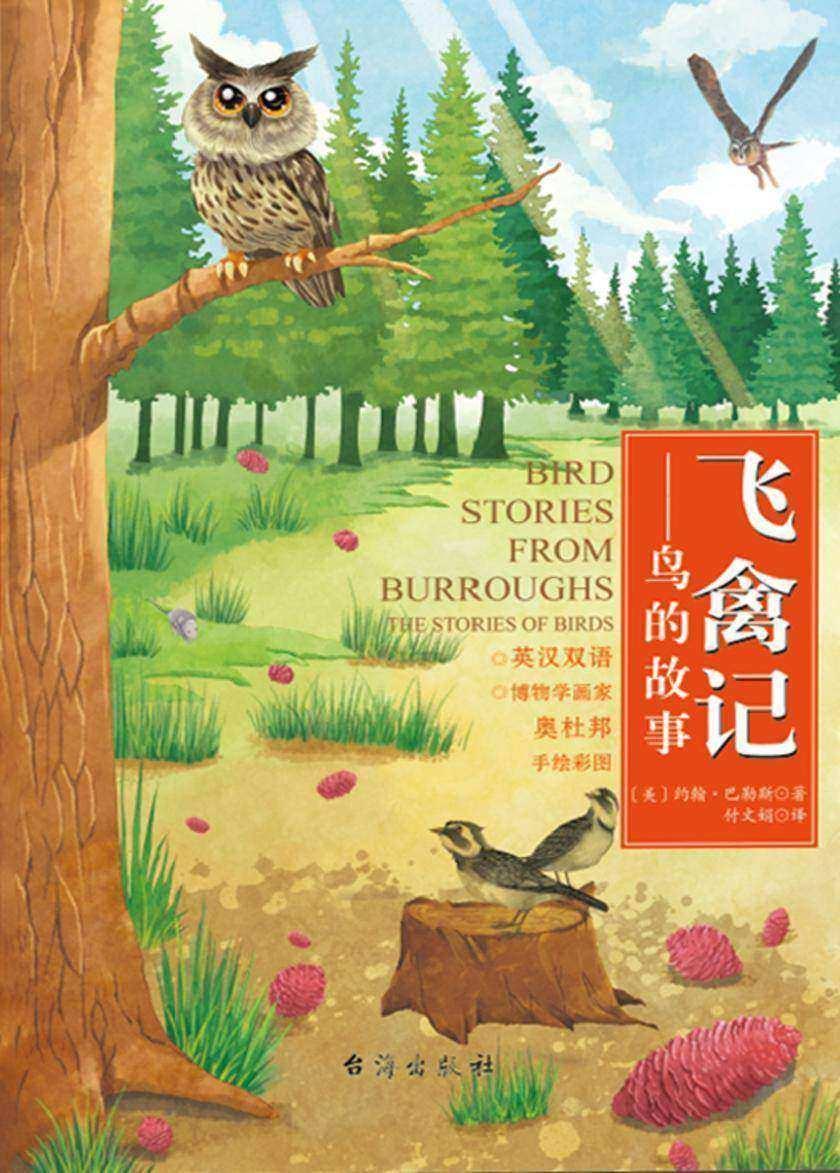 飞禽记-鸟的故事