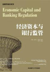 经济资本与银行监管(仅适用PC阅读)