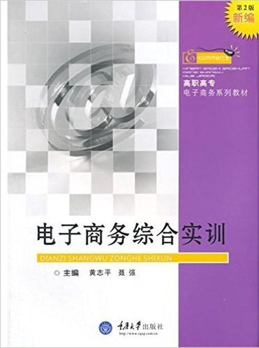 电子商务综合实训(第2版)
