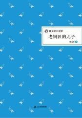 曹文轩小说馆·老铜匠的儿子