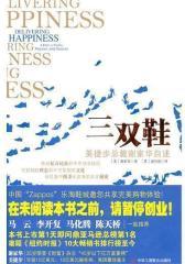 三双鞋:美捷步总裁谢家华自述(试读本)
