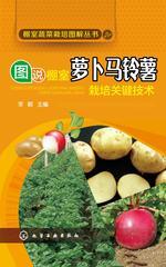 图说棚室萝卜马铃薯栽培关键技术