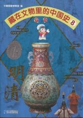 藏在文物里的中国史8 明清