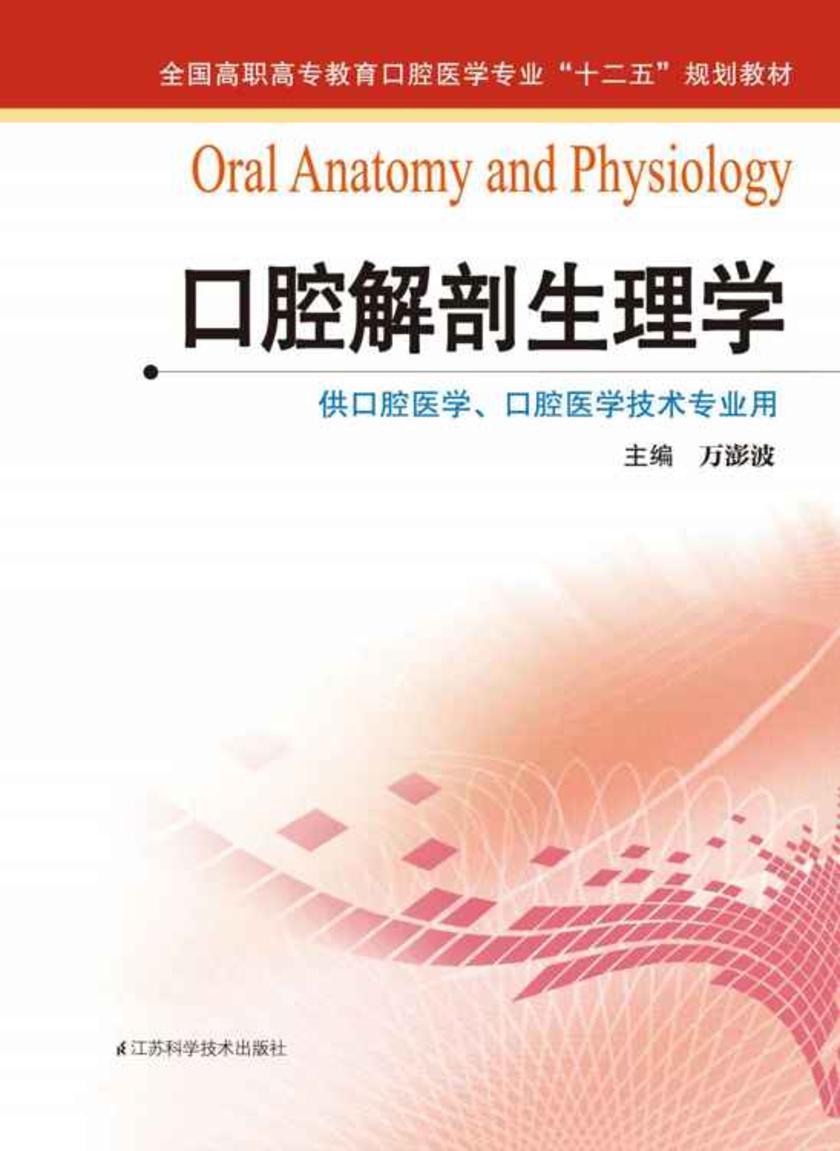 口腔解剖生理学