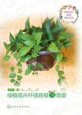 绿植花卉扦插移植与育苗