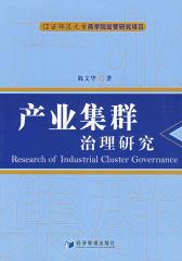 产业集群治理研究