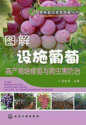 图解设施葡萄高产栽培修剪与病虫害防治
