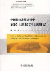 中国经济发展进程中农民土地权益问题研究