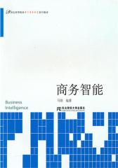 商务智能(仅适用PC阅读)