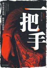 一把手(2009年官场小说开山之作)(试读本)