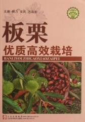 板栗优质高效栽培