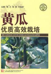 黄瓜优质高效栽培