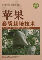 苹果套袋栽培技术