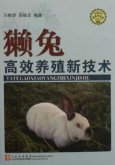 獭兔高效养殖新技术