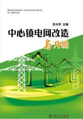 中心镇电网改造与升级