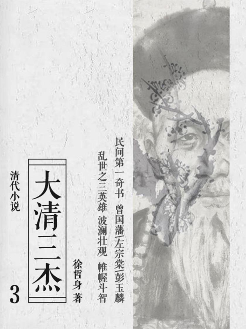 清代小说:大清三杰3