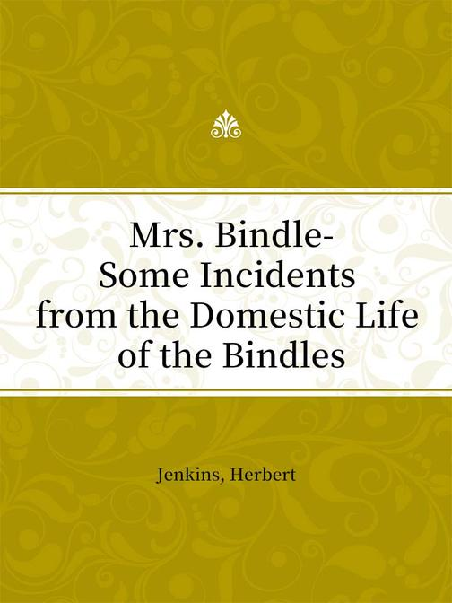 Mrs. Bindle-Some Incidents from the Domestic Life of the Bindles
