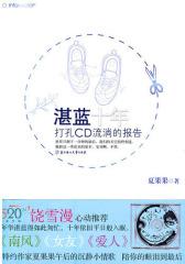 湛蓝十年·打孔CD流淌的报告(试读本)