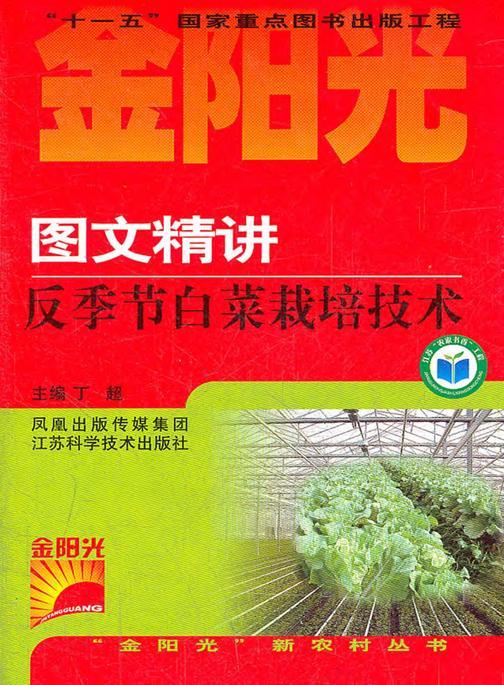 图文精讲反季节白菜栽培技术