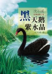 沈石溪珍情动物小说  黑天鹅紫水晶